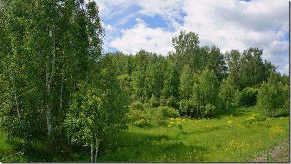 3183 Auf dem Weg nach Kemerovo  (1024x575)