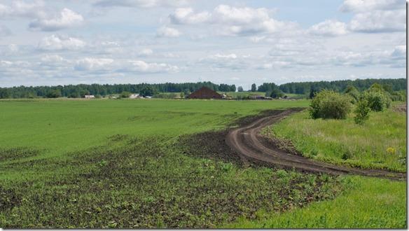 3198 Landschaft auf dem Weg nach Irkusk  (1024x575)