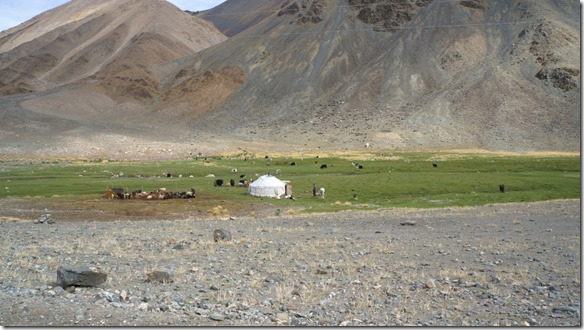 4024 Jeder grüne Platz wird von einer Familie mit ihren Herden besetzt  (1024x575)