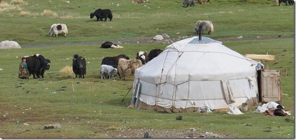 4026 Jurte in Mongolien  (1024x484)