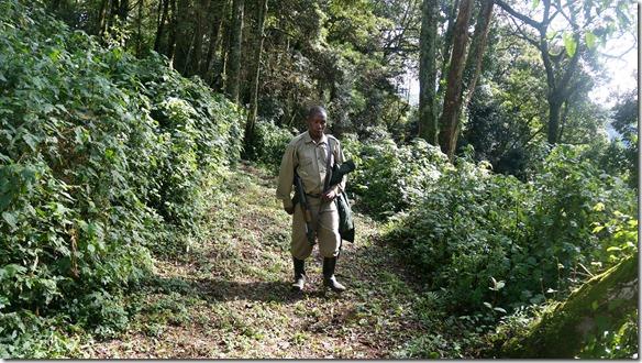 2224 der Letzte in unserer Gruppe ist dieser Sicherheitsguide mit Flinte = es können unverhofft Elefanten auftauchen
