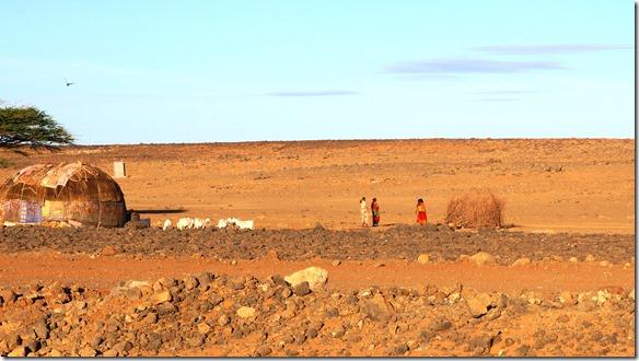 2338 viel wächst hier nicht aber die Leute leben in dieser Wüste von Kamel- und Rinderzucht