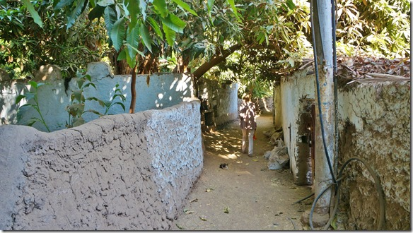 2907 durch die Gassen des nubischen Dorfes auf der Insel Elefantine