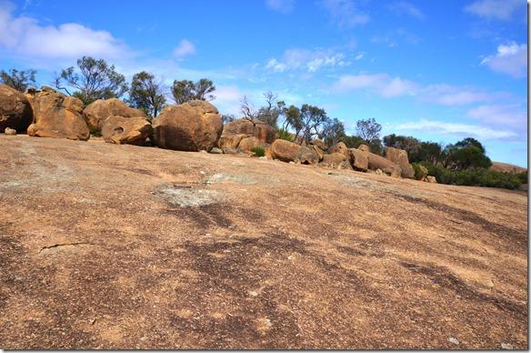 1264 eine ganze Ansammlung von runden Granitsteinen oberhalb des Wave Rocks