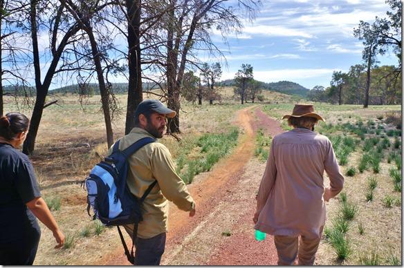 1523 ein Sonntagsspatziergang mit einem Aboriginess-Führer und seiner Frau