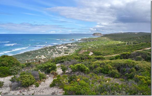 1611 in dieser schönen Bucht leben bis zu 300 Seelöwen