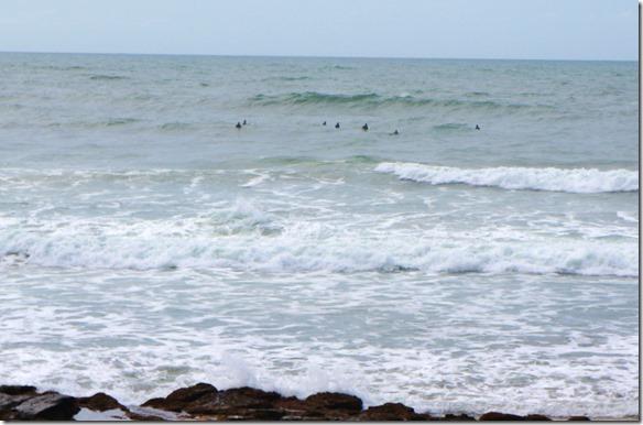 2509 Surfer in Mooloolaba gleich vor meinem Hotel