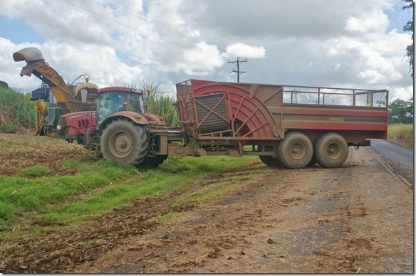 2636 solche Lader ohne Vorderachse werden für den Abtransport der Ernte verwendet