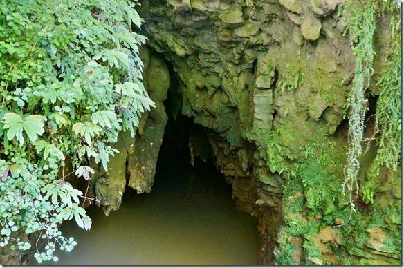 1062 wir besuchen die allgemeinen Höhlen auf eigene Faust durch den dichten Wald