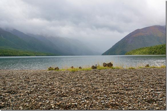 1168 die Berghänge am nahegelegenen Lake Rotoriti waren ganz verhangen, sonst hätten wir einen Ausblick auf verschneite Bergspitzen gehabt