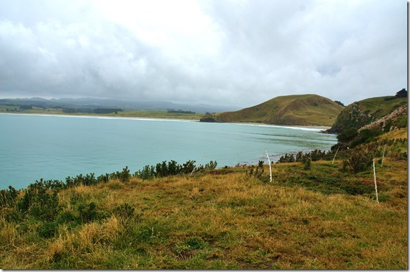 1265 eine schöne Bucht, aber wo sind die Pinguine