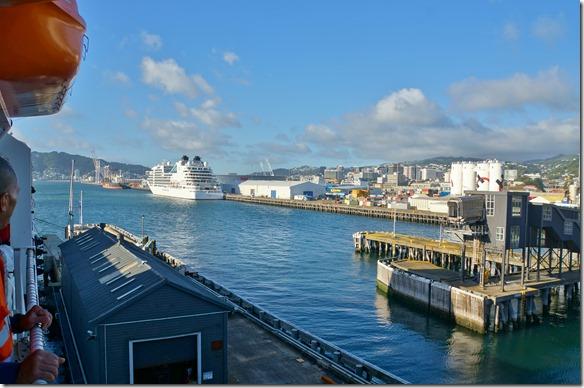 2178 der Hafen von Wellington von der Fähre aus