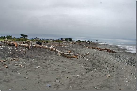 2475 hier in Hokitika liegt wiederum sehr viel angeschwemmtes Holz