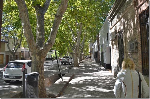 a2288 während des Tages sind wir nach San Rafael für eine Stadtbesichtigung und T-Shirtkauf für Rafael und seine Söhne bei sehr angenehmen Themparaturen gefahren