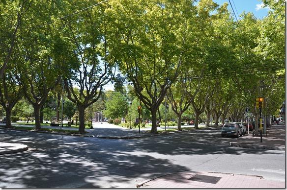 a2289 die ganze Stadt ist in allen SAtrassen mit Alleebäumen sehr grün