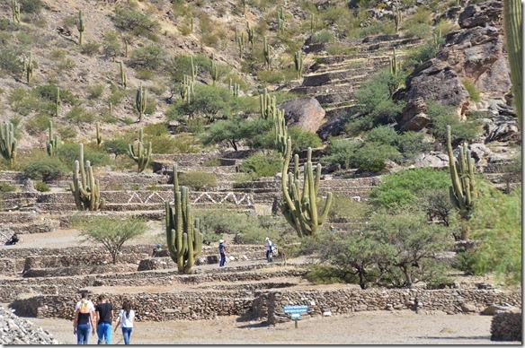 a2416 die Quilmes, ein Volk das von den Spaniern im 16jh fast ausgerottet wurde