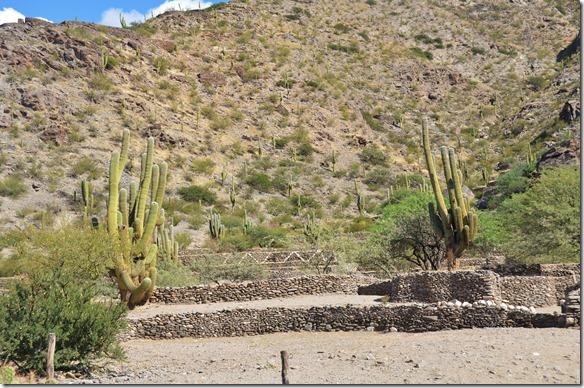 a2418 diese Ruinenmauern sind die Überreste der Behausungen der Quilmes