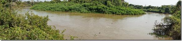 b2049 nur Fluss und Urwald
