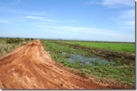 b2063 die Strassen auf dem aufgeschütteten Sumpfgebiet PANATNAL sind schnurgerade
